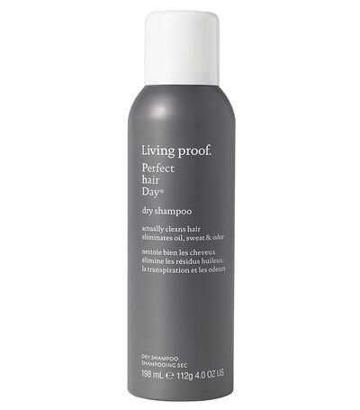 Perfect Hair Day Dry Shampoo, , large